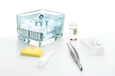 slide glass: Tools for histochemical analysis of patient tissue (fixed tissue samples, paraffin blocks and Coplin jar with sections stained for microscopic analysis) Stock Photo