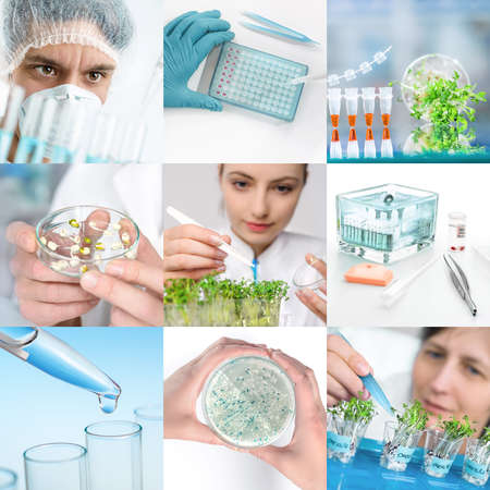 latex glove: Experimental plant biology and workers in protective wear, set of matching pictures for your leaflet or webpage