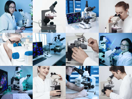 Scientists and technicians work with various microscopes in research facilities photo