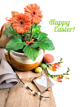 herbera: Easter border with orange herbera, freesias and spring decorations, caption Happy Easter! on plain white background, space for your text.