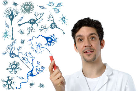 Young scientist or medical specialist explains about different types of brain cells