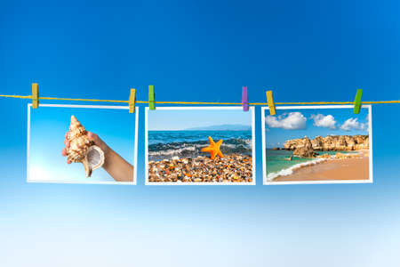 animal body part: Pictures of sea and sea creatures hanging on colorful pegs on blue background, collage Stock Photo