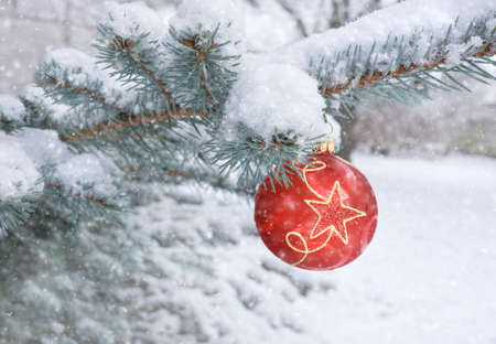 Merry Christmas! Red bauble with star design on a Christmas tree under falling snow