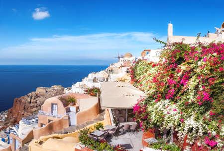 Oia village, Santorini island, Greece, with white and purple Bouganvilla plants, panoramic image