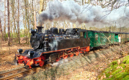 Historical steam train on island Rugen in Germany going through the forest in Spring