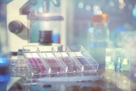 Antecedentes científicos con herramientas modernas de histopatología: diapositivas microscópicas manchadas de tejido del paciente, muestras de tejido fijas y un microscopio. Espacio para su texto. Esta imagen está en tonos. Foto de archivo