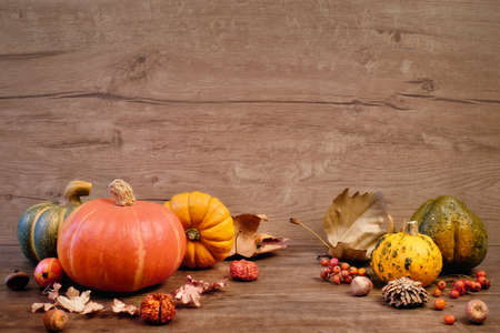 Autumn background with Fall dry decorations on wood. Side view, toned image, focus on the decorations. Space for your text Фото со стока
