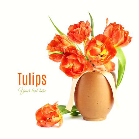 Orange tulips in clay vase solated on white background. Greeting card or design element for Mothers day or any other spring celebration. Space for your text.