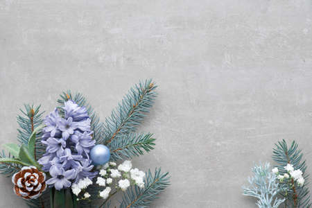 Winter floral corner in green and blue with fir twigs, hyacinth flowers and leaves on concrete background, copy-space