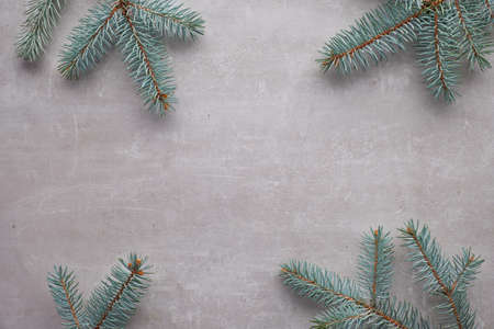 Christmas background with copy-space. Flat lay with fir twigs on light concrete background in gray and green.