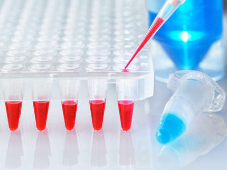 Science and molecular biology background with text space. Plastic tube with blue DNA sample and red tubes with PCR reaction mixture.