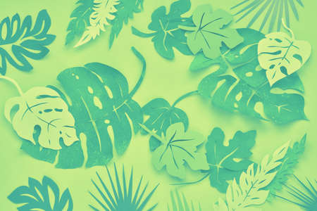 Flat lay, in lime green, mint and yellow colors, paper tropical leaves on green paper