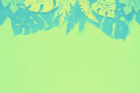 Floral background, flat lay with tropical leaves made out of paper in lime green and mint colors, space for your text Stock fotó