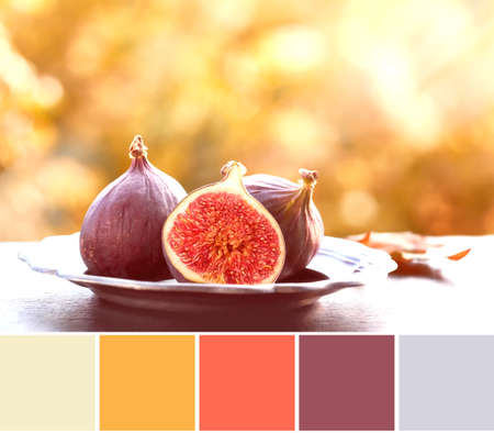 Color matching palette from top view image with fresh figs on dark shiny stone plate outdoors