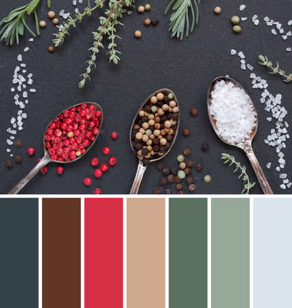 Color matching palette from image of herbs with salt and pepper in spoons on black slate stone background, top view, flat lay. Rosemary, thyme, salt and mixed peppercorns in vintage metal spoons.