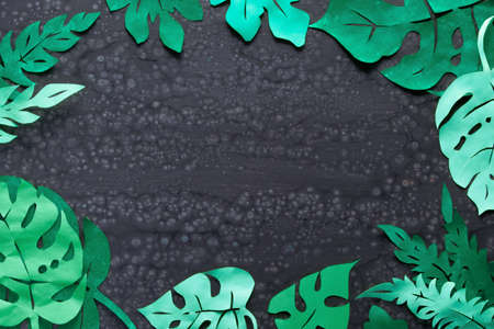 Paper craft background, frame made of exotic tropical leaves with text space on dark textured background with silicone cells, copy-space Stok Fotoğraf