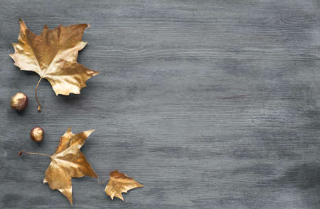 Autumn flat lay with painted golden leaves and copy-space on grey wooden board, copy-space 免版税图像