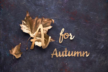 Autumn flat lay with painted golden leaves and text A for Autumn on dark textured bacgkrdound.