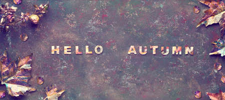 Autumn flat lay with painted golden leaves and text Hello Autumn on dark textured bacgkrdound. Panoramic image, banner composition.