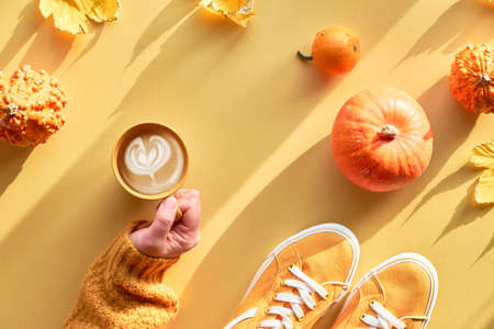 Yellow Autumn paper flat lay with hand with cup of pumpkin spice latte, orange pumpkins, maple leaves and canvas sneakers, Fall arrangement. Reklamní fotografie