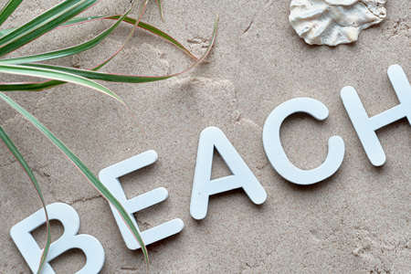 Decorative wooden letters beach on wet sand with palm leaves. Sand and sea background. 版權商用圖片