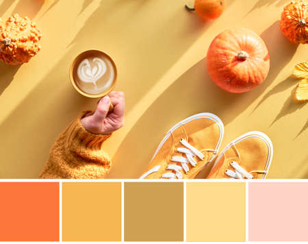 Color matching Autumn palette from yellow paper flat lay with hand with cup of pumpkin spice coffee latte, orange pumpkins, shoes and decorations with long shadows