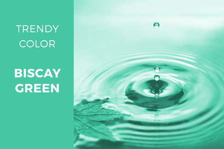 Biscay green - trendy color for 2020, toned close-up Autumn image of drops falling into water with floating dry maple leaf