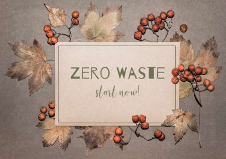 Autumn leaves and rowan berries on textured paper background. Natural seasonal decorations that do not need recycling. Text Zero Waste, start now! on a recycled paper card.