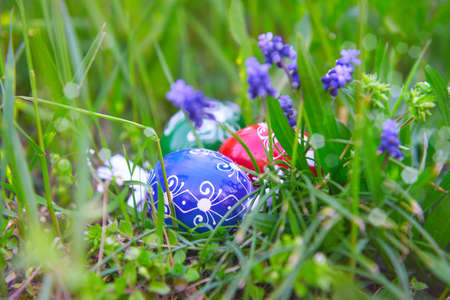 Happy Easter! Eco friendly traditional wooden painted Easter eggs in grass with grape hyacinth flowers outdoors in the garden 版權商用圖片
