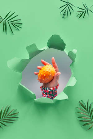 Kiwano, small exotic orange spiky fruit in human hand showing out of paper hole in tropical trendy biscay green geometric background with palm leaves Stockfoto