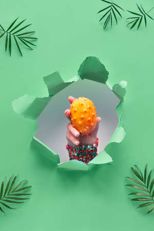 Kiwano, small exotic orange spiky fruit in human hand showing the fruit out of paper hole in tropical green geometric background with palm leaves Stockfoto