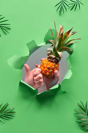 Small ripe orange pineapple in human hand, the other hand showing OK sign. Hands with the fruit show out of ripped paper hole. Tropical green geometric background with palm leaves