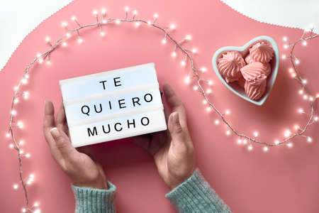 """Valentine top view on pink background. Light garland, woman hands showing heart sign. Metallic pink champagne bottle. Trendy monochrome flat lay . Message """"Te Quero Mucho"""" means """"I love you"""" in Spanish. Stock fotó"""