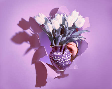 Happy Spring Holidays! Bunch of white tulips in purple ceramic jug in hand shown through torn violet paper hole. Trendy Springtime Birthday, Easter, Mother's day, birthday background.