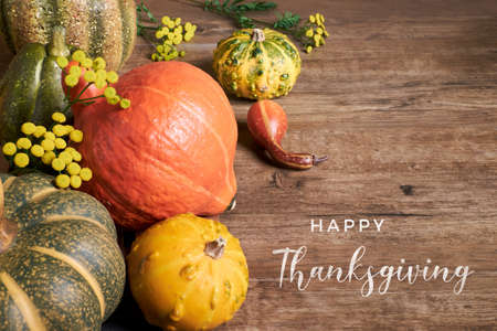 Eco friendly zero waste decor, natural and ceramic pumpkins, peppers and flowers on aged wood, text Happy Thanksgiving. Traditional Autumn Fall rustic decorations, modern zero waste trend.