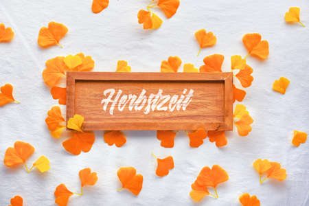 Autumn flat lay background in orange and brown. Blank wooden board with text Herbszeit that means Autumn time in German. White textile background with scattered orange ginkgo leaves.