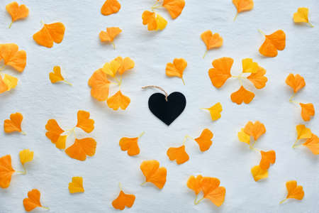 Autumn flat lay background in orange and brown. Silk orange ginkgo leaves scattered on white textile background, black wooden heart.