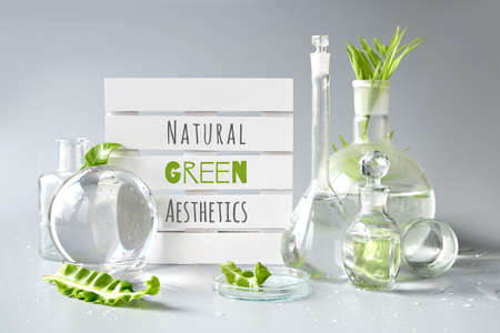 Green laboratory. Text Natural Green Aesthetics on white pallet. Exotic green leaves in transparent glass flasks, vials, Petri dishes. Reflections, distorted floral elements, water, natural light.