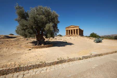 Temple of Concordia, or Tempio della Concordia in Italian. Temple building with olive tree. Valley of Temples, Agrigento, Sicily, Italy. 版權商用圖片 - 167150598