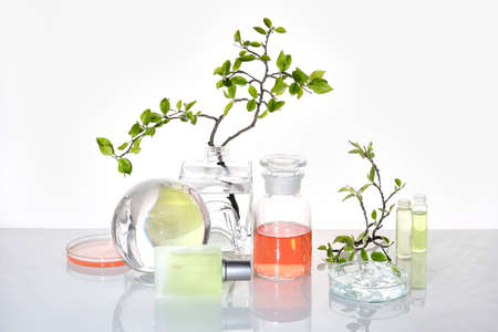 Natural Green laboratory. Abstract floral arrangement. Orange liquid product in transparent chemical jar. Reflections of leaves distorted in water. Springtime green twigs in jars and tubes.