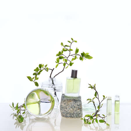 Natural Green laboratory. Abstract floral arrangement. Grey granite podium with product in transparent glass vial. Reflections of leaves distorted in water. Springtime green twigs in jars, tubes.