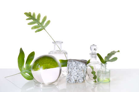 Natural Green laboratory. Abstract floral arrangement. Grey granite podium, space for your product. Reflections of leaves distorted in water. Exotic green leaves in transparent glass jars, tubes.