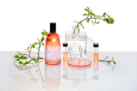 Natural Green laboratory. Abstract floral design. Orange liquid product, fragrance, perfume in transparent bottle. Reflections of leaves distorted in water. Spring green twigs in jars, petri dish.