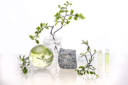Natural Green laboratory. Abstract floral arrangement. Grey granite podium, space for your product. Reflections of leaves distorted in water. Springtime green twigs in transparent glass jars, tubes. 版權商用圖片 - 167110951