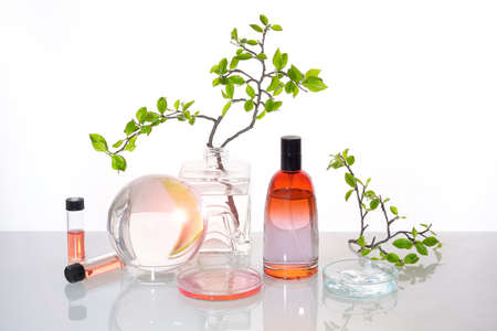 Natural Green laboratory. Abstract floral design. Orange liquid product, fragrance, perfume in glass bottle. Reflections of leaves distorted in water. Spring green twigs. Jars, glass sphere and tubes. 版權商用圖片 - 167171277