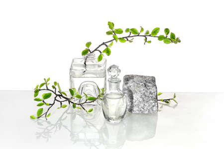 Natural Green laboratory. Abstract floral arrangement. Grey granite podium with product in transparent glass vial. Reflections of leaves distorted in water. Springtime green twigs in jars and tubes. 版權商用圖片 - 167118306