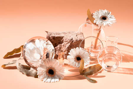 Brick product stand, natural podium. White flowers, exotic leaves seen through water in chemical glass, petri dishes, vials. Reflections, optical distortion. Creative biophilia design.