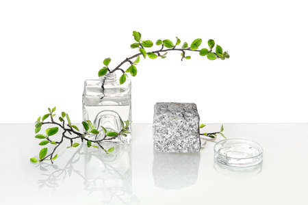 Natural Green laboratory. Abstract floral arrangement. Grey granite podium with product in transparent glass vial. Reflections of leaves distorted in water. Springtime green twigs in jars and tubes.