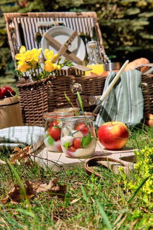 Zero waste picnic al fresco. Vintage picnic basket, hamper with baguette and lemonade outdoors on a grass with cheese, mozzarella, tomatoes, cherries, vine and flowers. 版權商用圖片 - 167129100