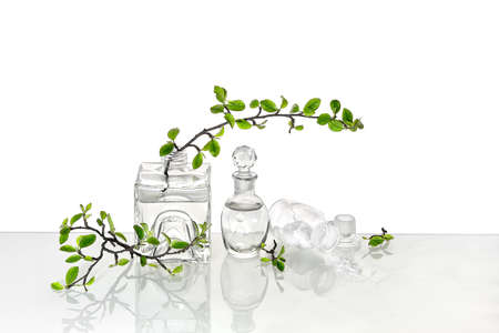 Natural Green laboratory. Abstract floral arrangement with transparent glass vase and vial with liquid product. Reflections of leaves distorted in water. Spring green twigs with green twigs in jars. 版權商用圖片 - 167157432